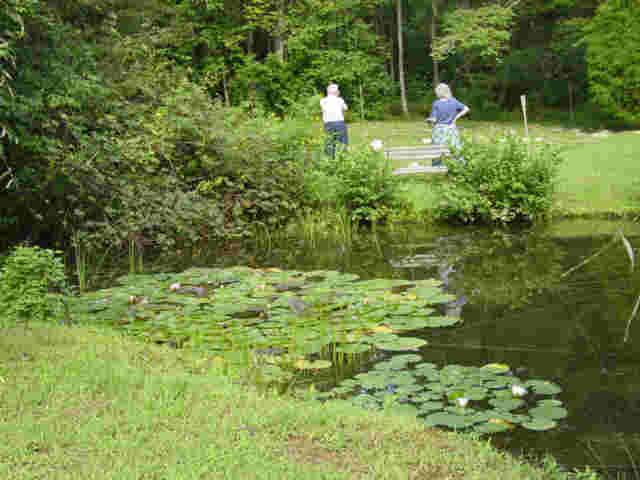 Labyrinth Pond
