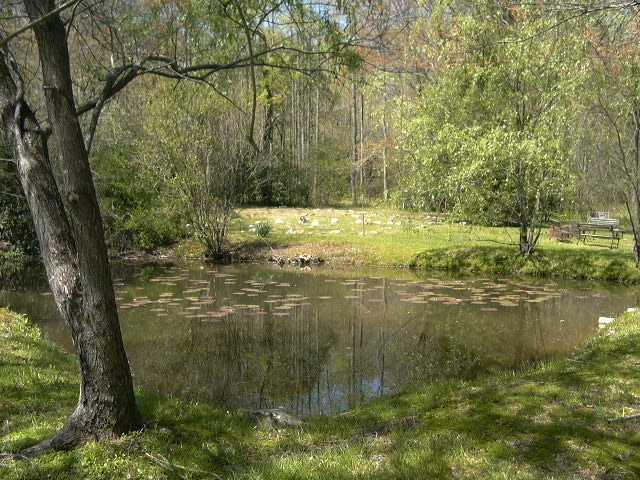pond&parkld